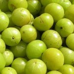 Amla – The fantastic item for improving your antioxidant level