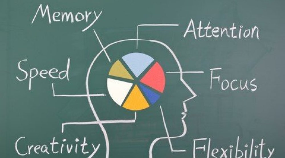 Nootropic providers for your supplements