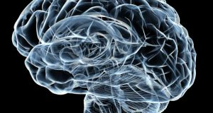 Things to Know about Smart Drugs – How They Optimize the Brain's Overall Function