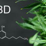CBD e liquids